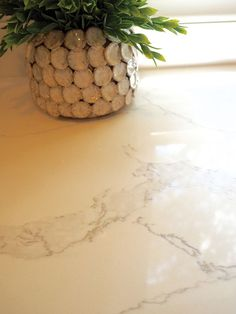 Calacatta Verona Quartz countertops have a soft white background and subtle veins. This stunning quartz requires no ongoing maintenance, is easy to clean, and durable, making it the perfect choice for busy residential and commercial kitchens.