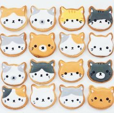 Our Cat Donut cookie cutter is an excellent addition to any cookie cutter collection! Perfect for hobbyist or professional bakers. Great for birthday cookies. Our cutter plastic is safe, durable and r