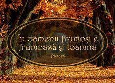 True Words, Savior, Motto, Quotes, Movies, Movie Posters, Autumn, Quotations, Salvador