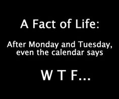 A fact of life: After Monday and Tuesday even the calendar says WTF...