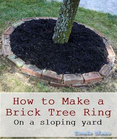 how to make a brick tree ring boarder in a sloping yard