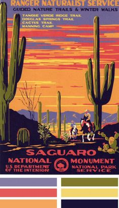 Saguaro Nat'l Park  1935