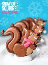 Sweet Squirrel cookies