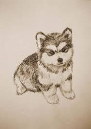 Resultado La imagen de dibujos a lápiz de grafito de perros siberianos perros