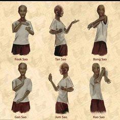 Tampa Wing Chun Kung Fu : happy international wing chun day to all ...