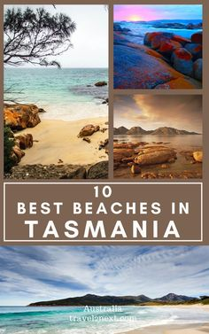 Australia Country, Family Destinations, Beaches In The World, New Zealand Travel, Great Barrier Reef, Tobias, Beach Photography, Tasmania, Australia Travel