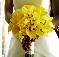 The wedding flowers were created using mostly yellow blooms for an amazing hit of color. A bouquet of yellow mini calla lilies and cymbidium orchids. Yellow Wedding Flowers, Flower Bouquet Wedding, Yellow Flowers, Yellow Weddings, Bouquet Flowers, Pretty Flowers, Bride Bouquets, Bridesmaid Bouquet, Wedding Inspiration