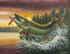 Attacked by Crazy Bees While Bass Fishing Pike Fishing, Trout Fishing, Bass Fishing, Fish Art, Freshwater Fish, Underwater Photography, Wildlife Art, Graphic Illustration, Vintage Sport