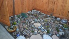 2012 the beginning of a rock/ cactus garden