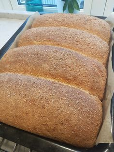 Hverdags grovbrød – Fru Haaland Bread Recipes, Baking Recipes, Cinnabon Cinnamon Rolls, Norwegian Food, Danish Food, Foods To Eat, Candy Recipes, Bread Baking, Love Food
