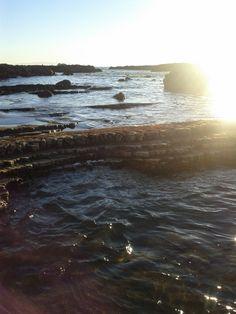 Tide Pools at Abalone Cove Shoreline Park