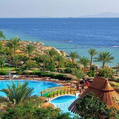 ☀️Туры в солнечный Египет к 8 марта! ☀️ Порадуйте любимую! 🌷 ✈️Вылет из Киева 03.03 на 7 ночей 🏩 Aurora Cyrene Resort 4* 282$ 🏩 Sea Beach Aqua Park Resort 4* 315$ 🏩 Sharm Plaza 4* 336$ 🏩 Siva Sharm 5* 350$ 🏩 Royal Albatros Moderna 5* 371$ 🏩 Royal Grand Sharm 5* 380$  Стоимость указана на 1 человека и включает: ✈️ перелёт 🏩 проживание 🍔питание 🚐групповой трансфер 📝страховка  Забронировать тур Вы можете по адресу: 🏠Г. Херсон, Ул. Потемкинская, 84 ☎️ 46-13-23 📱050 21 000 42 📱067…
