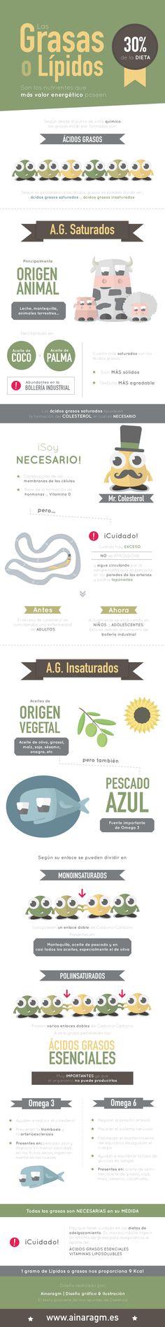 Infografía sobre los lípidos o grasas