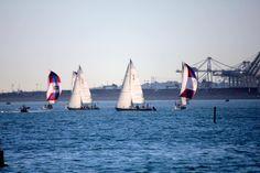 Long Beach Sailing  #sailing #sailboat #marine #waterlife #nautical #goodlife #keel #fun #ocean #portoflongbeach #cranes #bluesocean #clouds #harbor #sailboatracing by helmutphotos