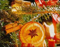 Edible ornaments: Orange Stars: Cut orange slices approx. 1/4 inch thick. Layer two differently sized orange slices with an anise star on top. Bind with gold craft wire, and add ribbon for hanging...also cinnamon stick bundles. I love this.