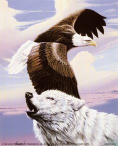 Eagle in Flight with Wolf at Allposters.com at AllPosters.com
