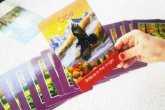 Children's Animal Spirit Cards ⋆ The Indigo Teacher Peace Studies, Spirit Animal, Indigo, Teacher, Children, Cards, Animals, Young Children, Professor