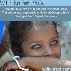 - Fact- : Via: www.letstfact.com