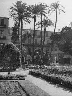 Our rooms overlooked the garden of the hotel; Shepheard's Hotel, Romantic Series, Elizabeth Peters, Amelia Peabody, Old Egypt, Ancient Egypt, Valley Of The Kings, Love Scenes, Interior Garden