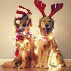 NORAD Tracks Santa – Holiday Hub