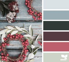 Holiday Greetings from Design Seeds (12-25-2015)