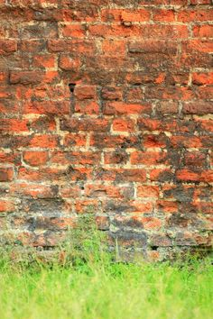 Realistic Graphic DOWNLOAD (.ai, .psd) :: http://hardcast.de/pinterest-itmid-1006683806i.html ... Grungy background of a brick wall texture ...  abstract, antiqued, architecture, background, brick, broken, building, concrete, construction, destroyed, dirty, grass, grunge, old, red, texture, wall  ... Realistic Photo Graphic Print Obejct Business Web Elements Illustration Design Templates ... DOWNLOAD :: http://hardcast.de/pinterest-itmid-1006683806i.html