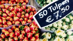 Amsterdam tulips shop market, CC BY 2.0 Lali Masriera via Flickr
