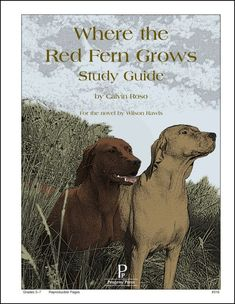 a summary of wilson rawls novel where the red fern grows Where the red fern grows by: wilson rawls 10  -compound sentence summary: in where the red fern grow it starts out with billy wanting two hounds dogs.