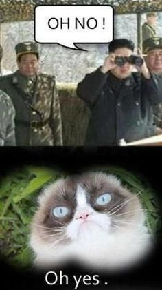 Grumpy cat meme...For more jokes funny and humor memes visit www.bestfunnyjokes4u.com/rofl-funny-pic-of-the-day-8/