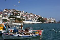 www.360skopelos.com Greece, Island, Building, Photography, Life, Greece Country, Photograph, Buildings, Fotografie