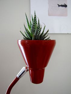 An old lamp repurposed into a planter. I pass on all types of cool lamps because I fear the wiring, cool idea!