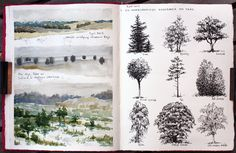 Pen and watercolors.The three different sketches on the left clearly show three different types of trees and vegetation. Trees are one of the most common elements in landscape sketches and drawings. Through studying the habitus. Artist Journal, Artist Sketchbook, Art Journal Pages, Art Journals, Landscape Sketch, Landscape Architecture, Architecture Photo, Nature Sketch, A Level Art
