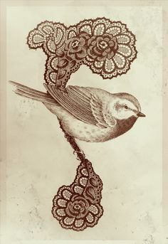 To see more: Teagan White's website. Teagan White at Society Nature Drawing, Bird Drawings, Bird Illustration, Vintage Birds, Vintage Flowers, White Art, Beautiful Birds, Beautiful Things, I Tattoo