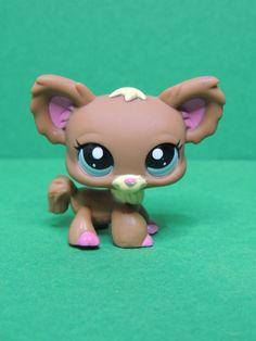 #1623 chien dog Chihuahua papillon brown & pink LPS Littlest Pet Shop Figure