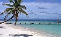 Vacation, anyone? West Bay in Roatan, Honduras.