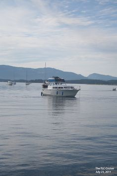 Mark's Boat (The Wild One) July 23, 2011 Sidney Spit @ TLC BBQ Party