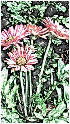 Print free coloring pages, watercolor sketches and paint-over patterns at TodaysArts.net