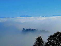 ZWalk – Wanderungen rund um Zwettl im Waldviertel (www.zwalk.at/) » Panoramaweg - Blick zum Ötscher Das Hotel, Clouds, Mountains, Landscape, Nature, Painting, Travel, Outdoor, Steam Bath