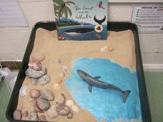 Invitation to retell the story Julia Donaldson's Snail and the Whale. Spot the snail! Via Anna Longhawn Literacy Activities, Preschool Activities, Julia Donaldson Books, Snail And The Whale, Story Sack, Tuff Spot, Tuff Tray, Small World Play, Play Based Learning
