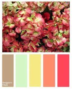 English Shrub Rose Color Scheme   eLearning   Pinterest   Shrub and ...