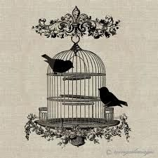 Reference for sternum bird cage tattoo