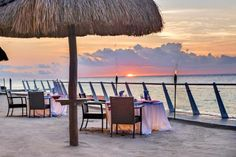 All Inclusive Resorts In The Riviera Maya - Cozumel Palace Mexico Honeymoon, All Inclusive Honeymoon, All Inclusive Wedding Packages, Best All Inclusive Resorts, Cancun Resorts, Cozumel, Hotels And Resorts, Dreams Tulum, Maui Vacation