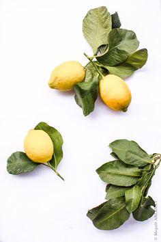 Fiadone au citron - Quatre saisons au jardin