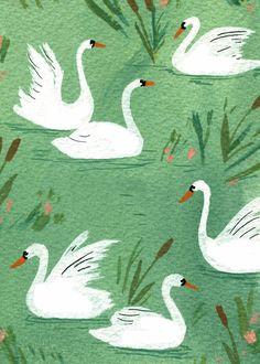 becca stadtlander illustration: sketches I want swan wallpaper