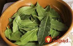 Toto korenie má doma hádam každý, o tomto účinku však vie len málokto! Korn, Spinach, Food And Drink, Herbs, Good Things, Vegetables, Health, Diet, Household