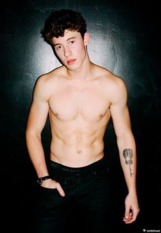 Shawn Mendes topless.