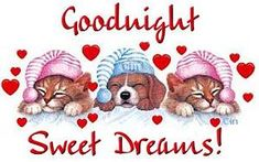 Een goede nacht en welterusten, krabbels en animaties 1 van tekstplaatjes.US