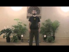 Erik Harris Qigong Part 2