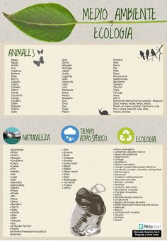 Medio ambiente y ecología: animales, naturaleza y tiempo atmosférico. http://lenguajeyotrasluces.wordpress.com/