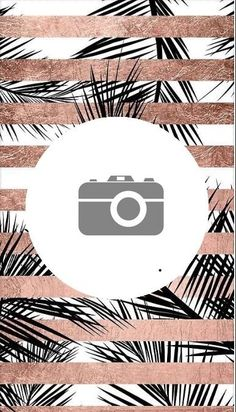 Instagram Design, Free Instagram, Instagram Story, Insta Snap, Camera Icon, Insta Icon, Story Template, Instagram Highlight Icons, Story Highlights
